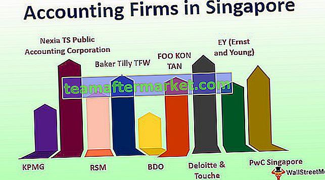 Wirtschaftsprüfungsunternehmen in Singapur