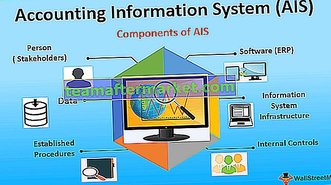 Buchhaltungsinformationssystem (AIS)