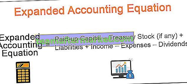 Erweiterte Rechnungslegungsgleichung