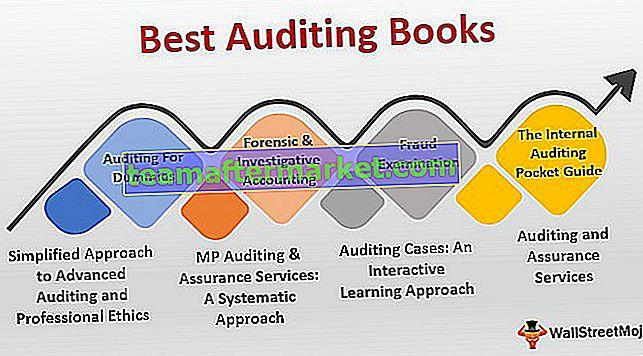 Meilleurs livres d'audit