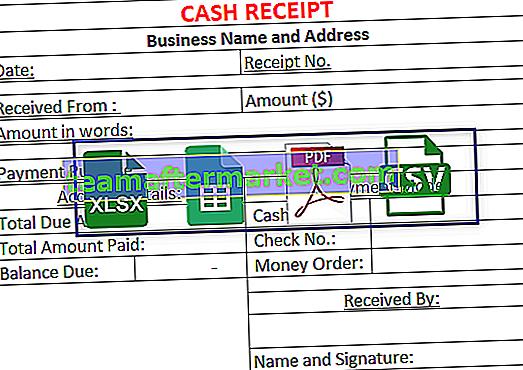 Modello di ricevuta in contanti
