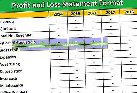 Formato del conto profitti e perdite
