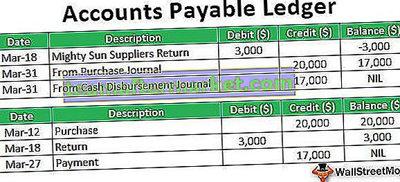 Libro mastro contabilità fornitori