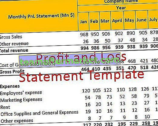 Vorlage für Gewinn- und Verlustrechnung