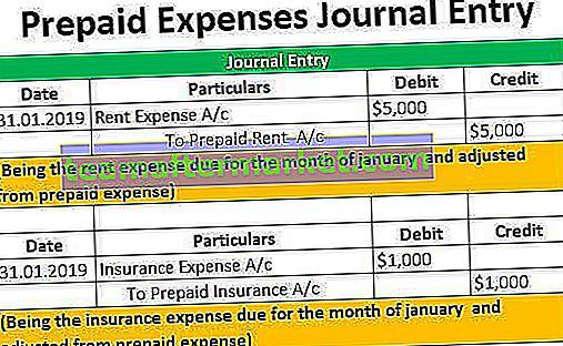 Journaleintrag für vorausbezahlte Ausgaben