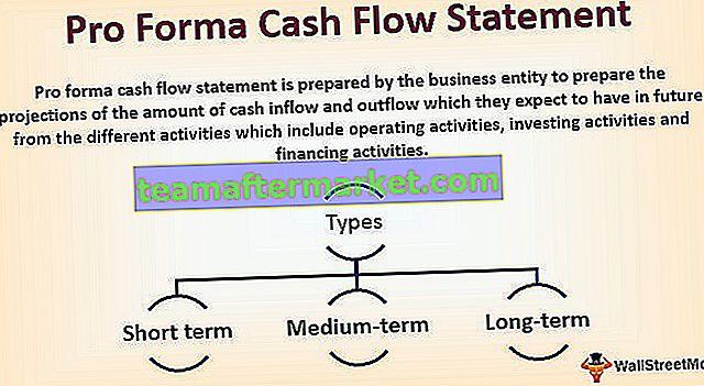 Pro-Forma-Kapitalflussrechnung