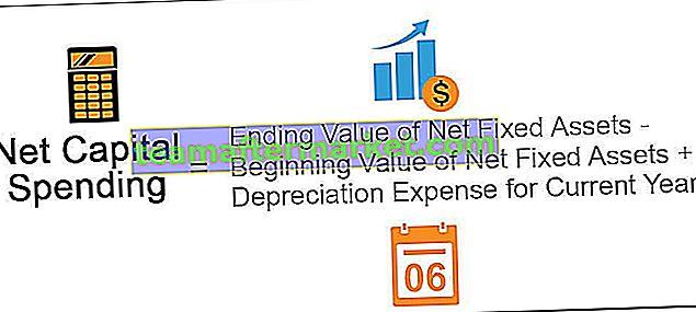 Nettokapitalausgaben