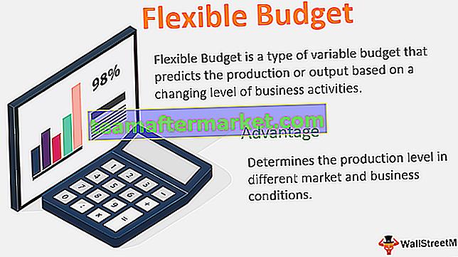 Elastyczny budżet