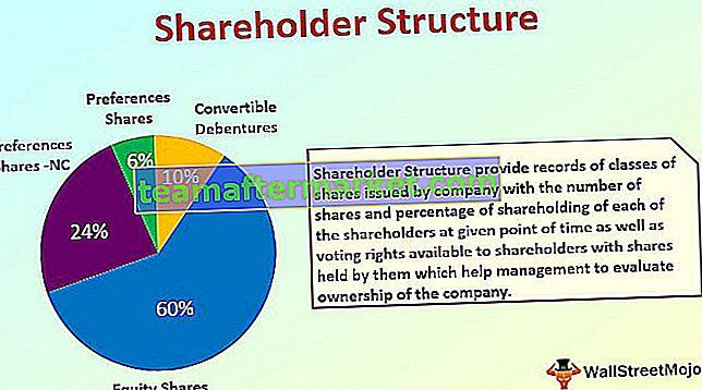 Aandeelhoudersstructuur