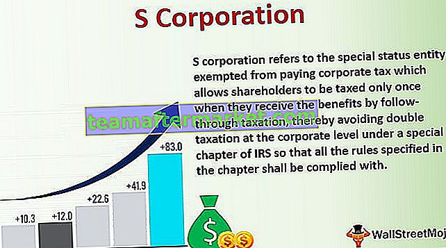 S Corporation (S Corp)