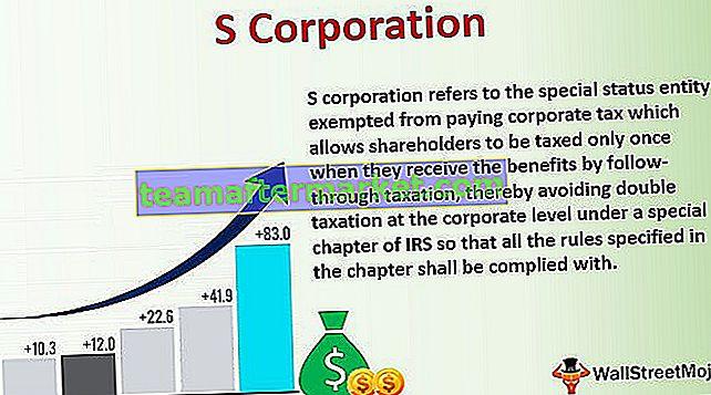 Corporación S (S Corp)