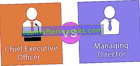 CEO versus algemeen directeur