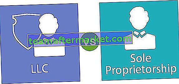 LLC gegen Einzelunternehmen