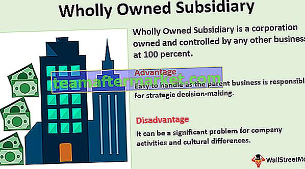 100% ige Tochtergesellschaft