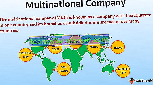 Multinationaal bedrijf