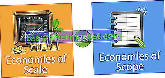 Économies d'échelle vs économies de portée