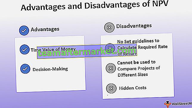 Vor- und Nachteile des Kapitalwerts