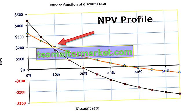 NPV-Profil