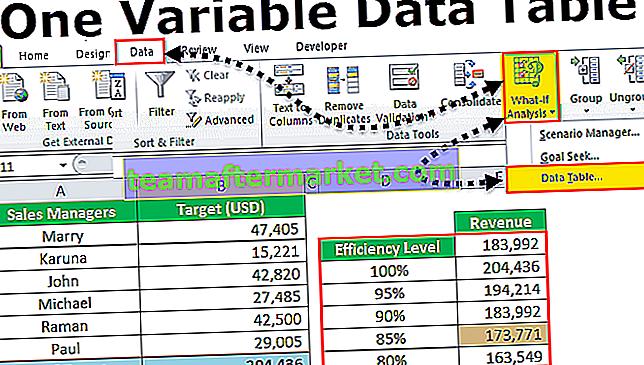 Eine variable Datentabelle in Excel