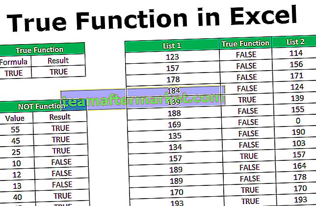Echte Excel-Funktion