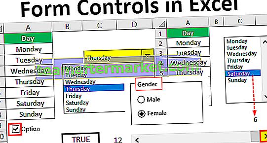 Kontrol Formulir di Excel