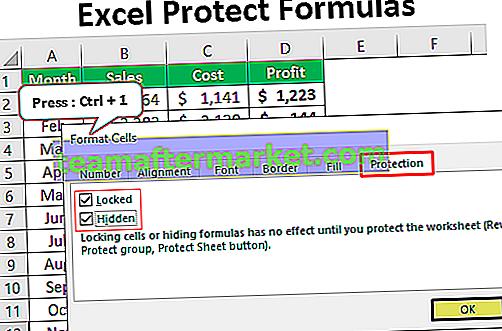 Excel Protect Rumus