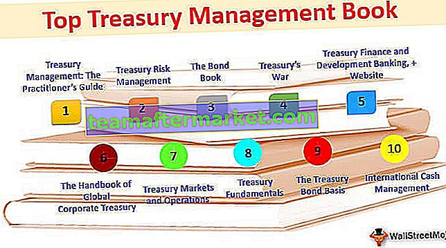 Bestes Treasury Management-Buch