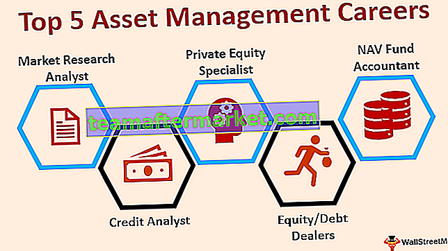 Asset Management Karriere