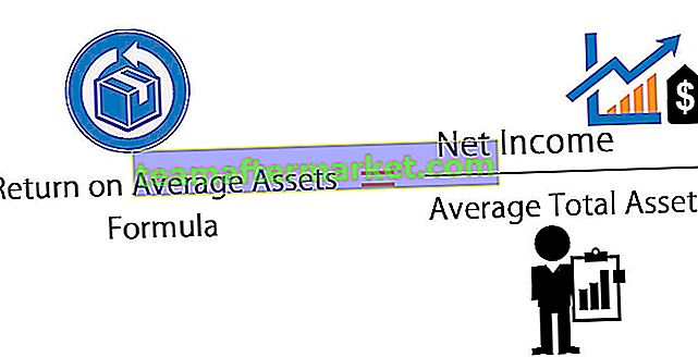 Return on Average Assets (ROAA)