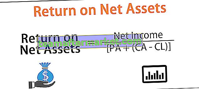 Return on Net Assets