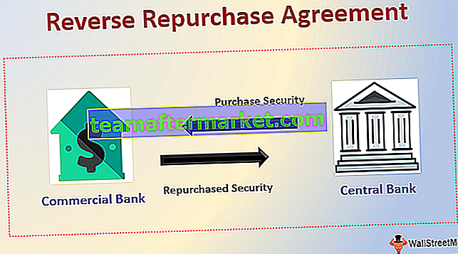 Reverse Repurchase Agreement