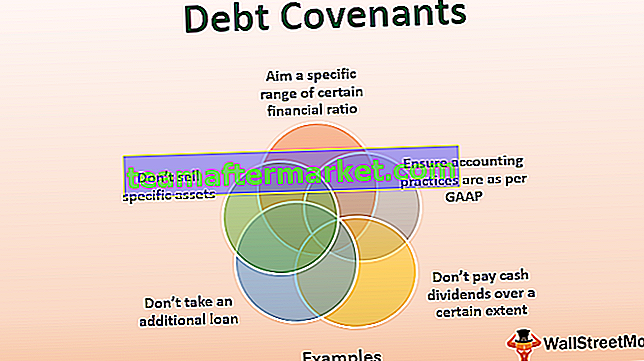 Debt Covenants