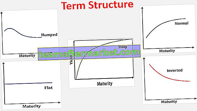 Struktur Istilah