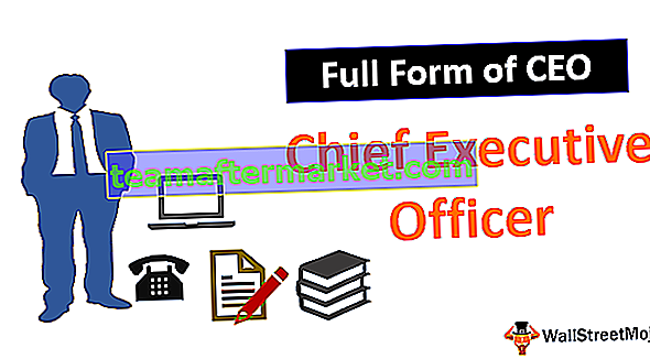 Bentuk Penuh CEO
