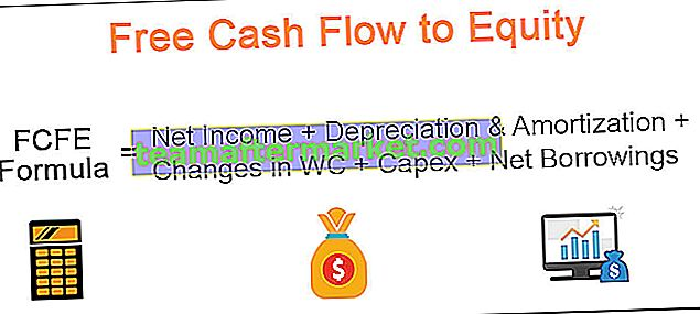 FCFE (Free Cash Flow to Equity)