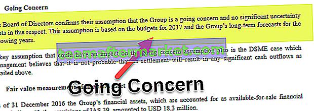 Going Concern-Konzept