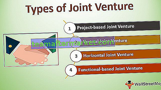 Arten von Joint Ventures